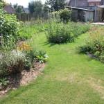 kruidenborder loopt door en maakt de tuin langgerekter