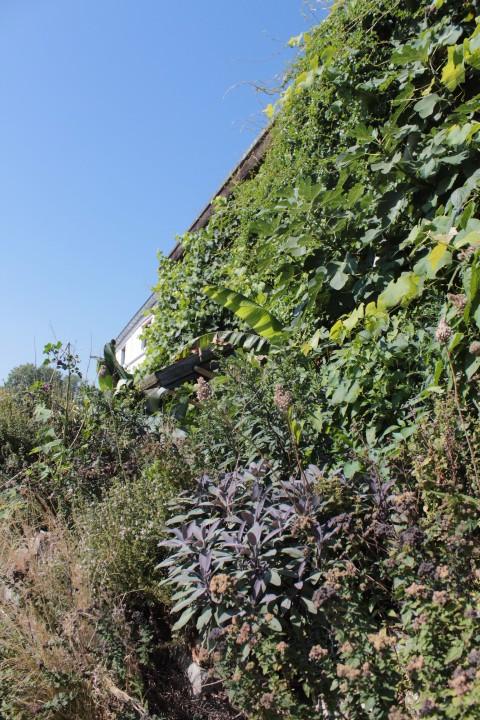 tuinieren op een halve meter breedte