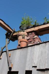 Van dak naar dak