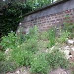 kruidenheuvel van steenpuin