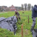 bodem afdekken met landbouwfolie in de haagstroken