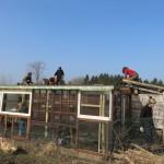 Groendak-under-construction