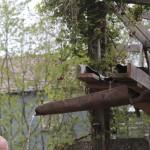 Watertoevoer, gemaakt van een oud tuingereedschap dat iemand hier ooit achterliet.