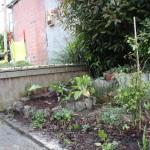 Verpieterd sierbordertje werd opgewaardeerd en aangevuld met nuttige kruiden, vaste groenten en krentenboom