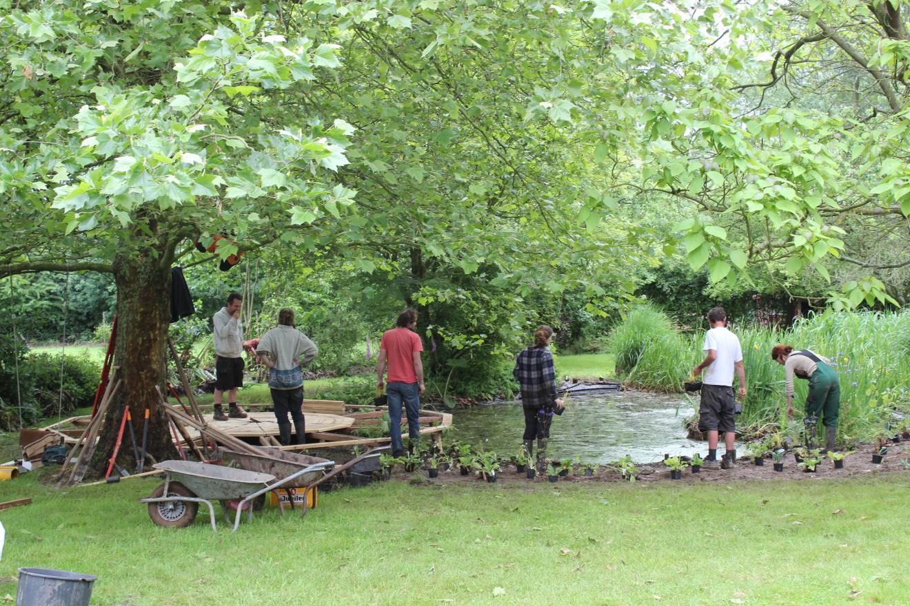 Aanplant rond de vijver en bouw van het ponton onder de plataan